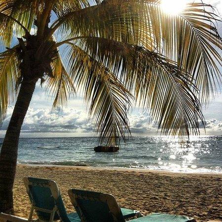 Scuba Diving Divas : Paradise!