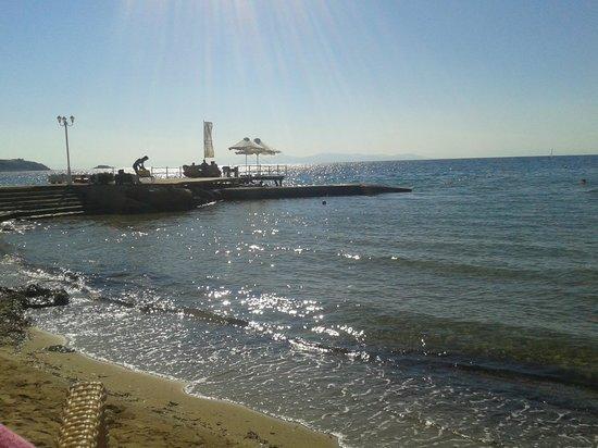 Amarilia Hotel: the sea