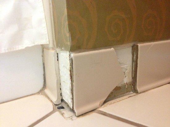 DoubleTree by Hilton Hotel Memphis : Broken tiles