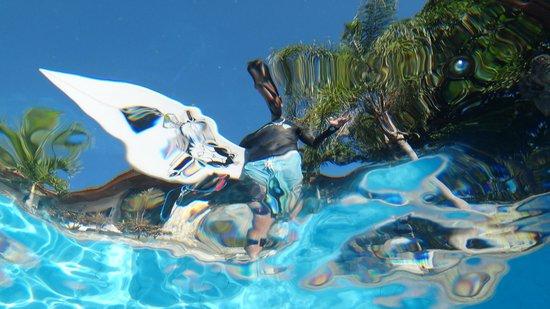 Puri Uluwatu Villas: Pool time after surf!