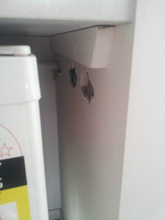 Quality Suites Fremantle: Holes in wall next to fridge for 'plumbing' (looks dodgy)