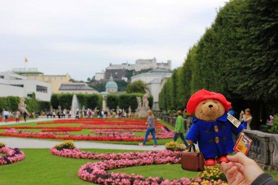 พระราชวังและสวนมิราเบลล์: paddington at the palace gardens