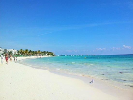Mahekal Beach Resort: Strand