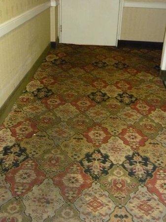 Sturbridge Host Hotel & Conference Center: filthy carpet