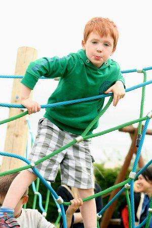 Active Kid Adventure Park: Climbing Net