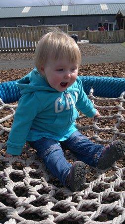 Active Kid Adventure Park: On the Bird Nest Swing