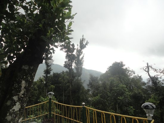 Kaivalyam Retreat: View from tree house