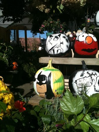 Pumkins at the Atwater Market