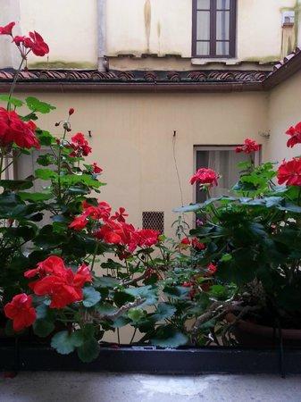 Hotel Cestelli : Vista desde la habitación del patio interior