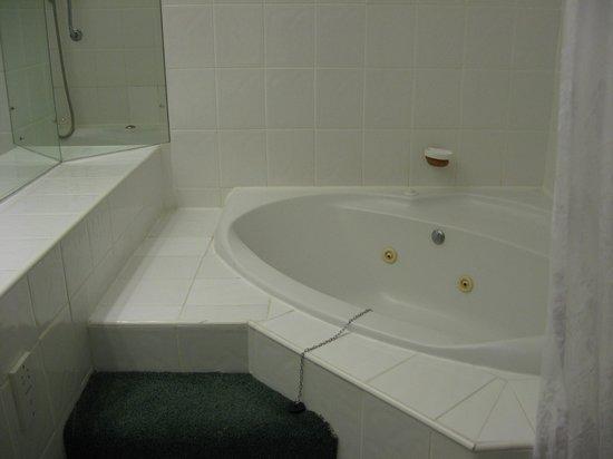 Bryn Howel Hotel: Spa bath