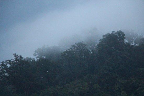 Leisure Vacations Myrica Resort: Myrica-Mystical mountain mist