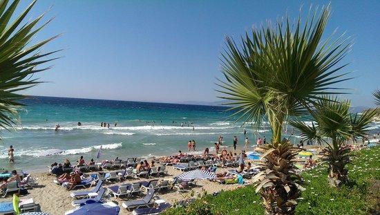 Ladies Beach: Dejlig sandstrand, tilpas lavvandet.