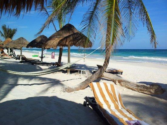 Villa Las Estrellas: Strandliege oder Hängematte?