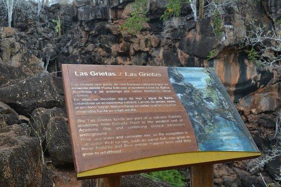 Cartel de Las grietas