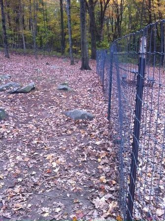 Odetah Camping Resort: rocky dog park with rickety fence