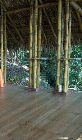 Cashew Hill Jungle Cottages: Cashew Hill Yoga Studio