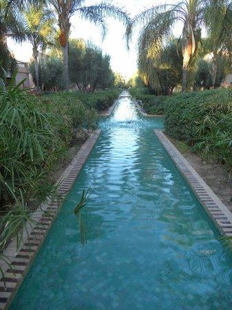 Club Med Marrakech La Palmeraie: Jardins