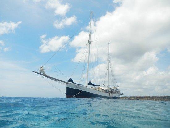 Sailing Ship Insulinde - Day Tours: Sailing ship Insulinde