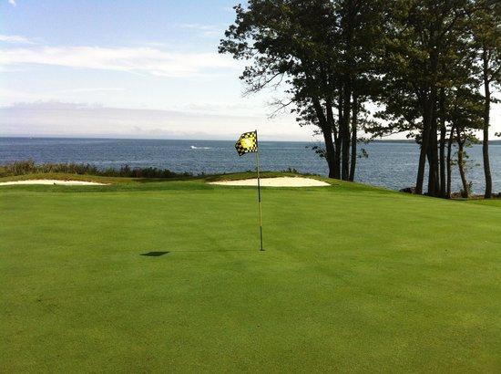 Samoset Resort Golf Course: #14 Green
