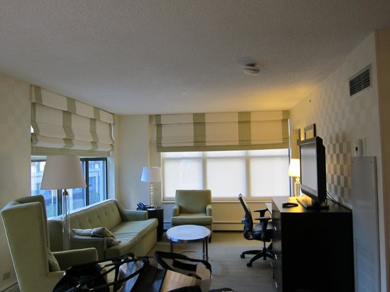 Hampton Inn & Suites Chicago - Downtown: Living room