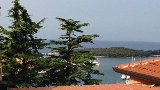 Hotel Vista : panorama dalla terrazza