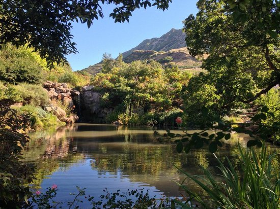 Red Butte Garden: Another pond view