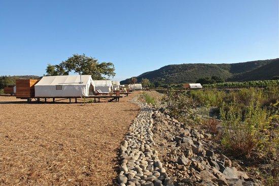 Cabanas Cuatrocuatros: Cabañas rodeadas de viñedos