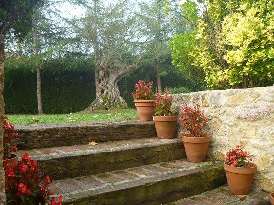 Hotel Palacio de la Vinona: jardines