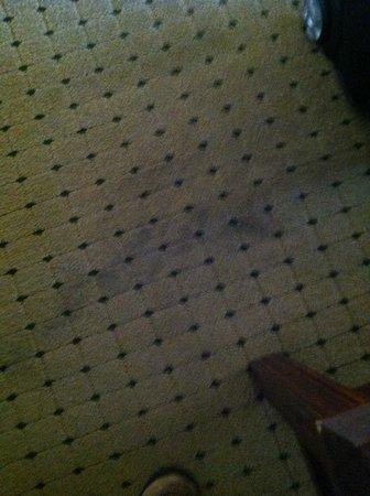 Econo Lodge: Room Carpet Stain