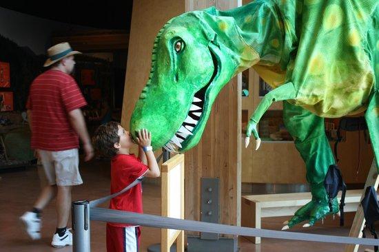 Turtle Bay Exploration Park : Dino Exhibit at Turtle Bay