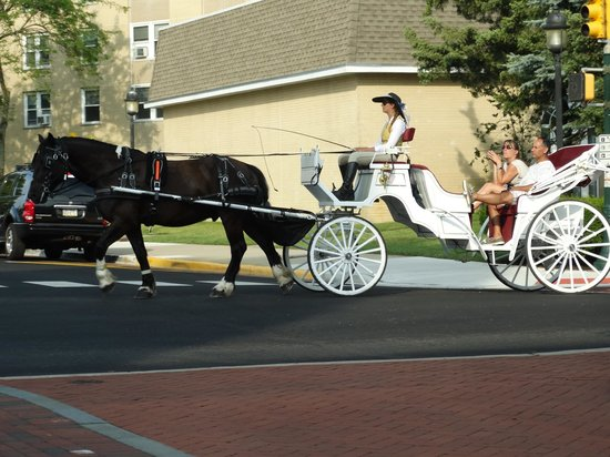 Cape May Carriage Company : Beautiful carriages.