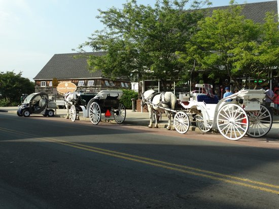 Cape May Carriage Company : Waiting for the Carriage ride....