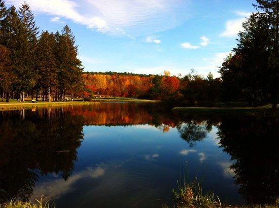 Swan Lake, Benson Park, Hudson, NH.