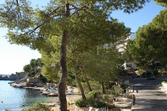 Hotel Coronado Thalasso & Spa : Von der Straße aus gesehen (Strand links)