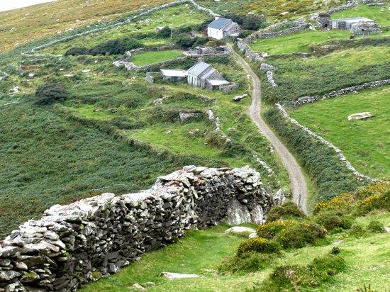 Dingle Tours: De muren van het land. De Kelten hebben het gemaakt.