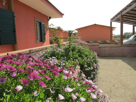 Bed and Breakfast Le Ginestre: Immerso nel verde