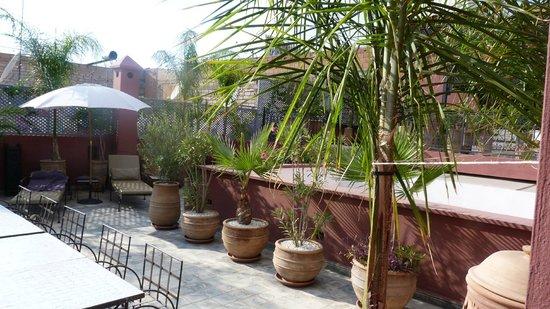 Riad Alegria: Le jardin sur le toit et piscine