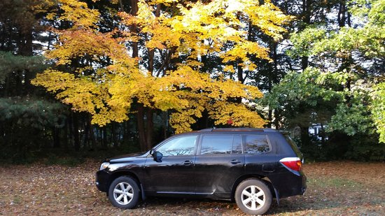 Ethan Allen Motel: This is my SUV parked under an Ethan Allen Motel tree.