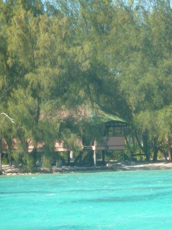 Bora Bora Ecolodge : vue du motu et du fare