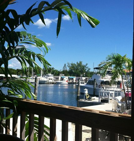 Key Largo Fisheries Backyard : Sitting on the porch. Great view and atmosphere
