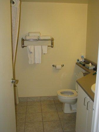 Candlewood Suites Montreal Centre-Ville : Salle de bains