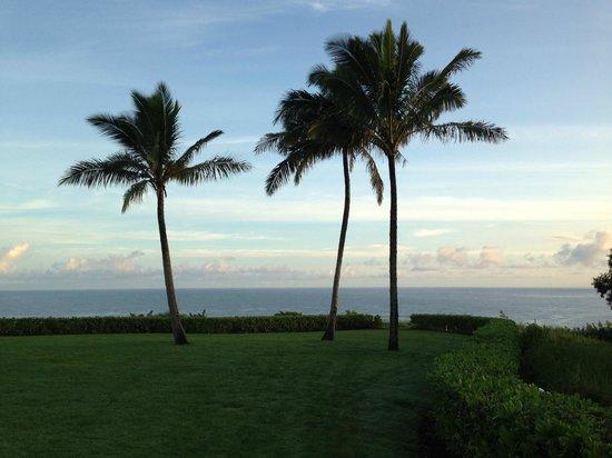 Westin Princeville Ocean Resort Villas: View from our villa