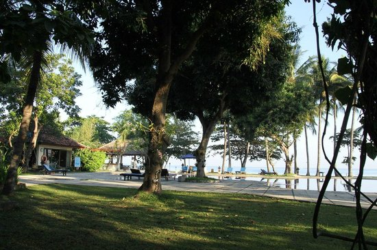 Sunari Beach Resort: Garden