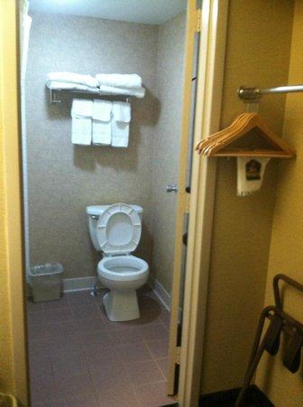 Best Western Summit Inn : Bath