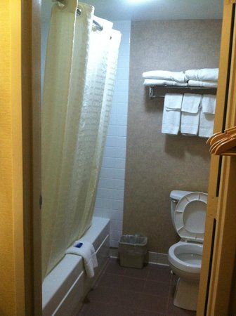 Best Western Summit Inn: Bathroom