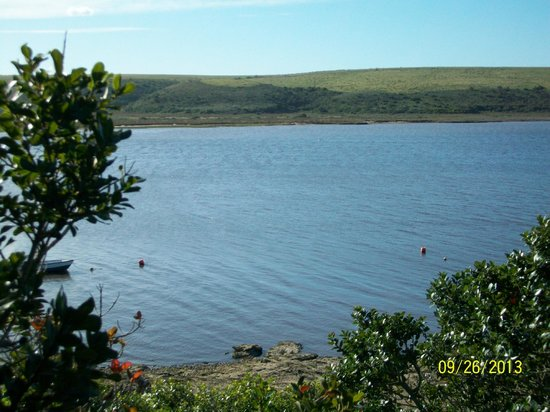 Mudlark River Front Lodge: The beautiful view from our Room