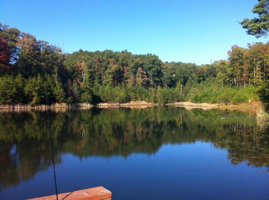 Cliffview Resort: One of many lakes we fished in - caught 7 Bass!