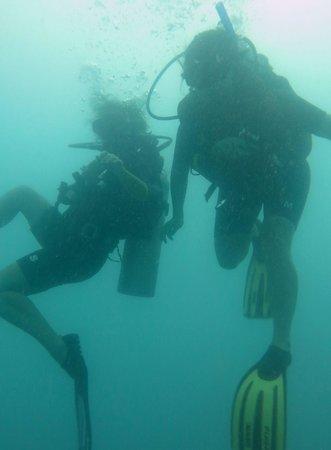 Goodtime Adventures, Koh Tao: diving buddies
