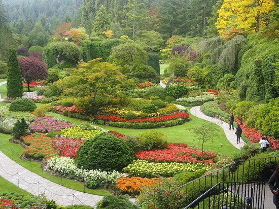 Blumige b ume picture of the butchart gardens central - Best time to visit butchart gardens ...