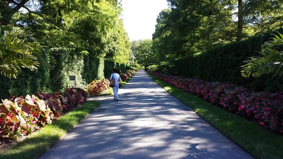 Longwood Gardens: Strolling path
